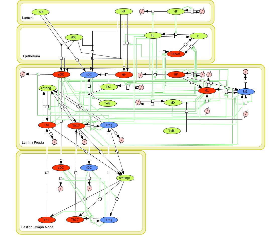 Intranet Tools Nutritional Immunology And Molecular Medicine Also Learning Memory Diagram On Network With Enisi Training
